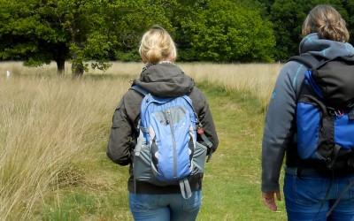 Life Coaching in de natuur: de 10 voordelen!