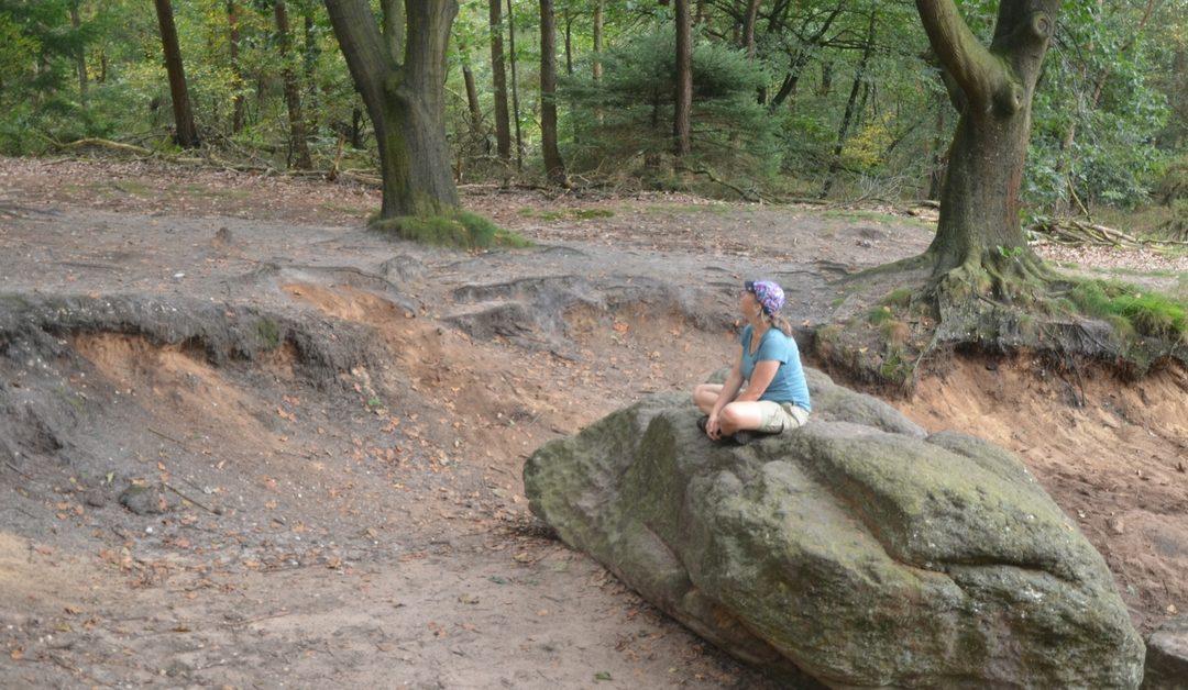 Elke dag een avontuur - Katrien de Jong