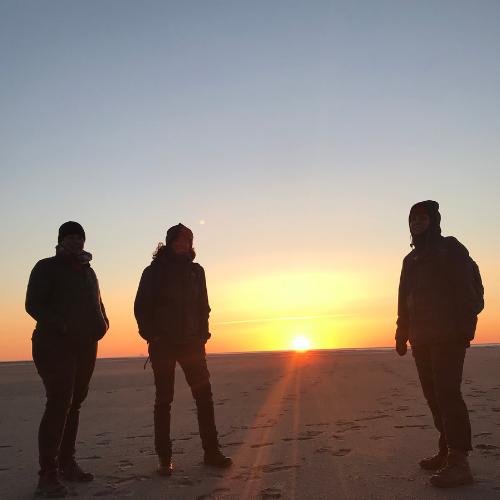 Into the Wild Schiermonnikoog - Katrien de Jong
