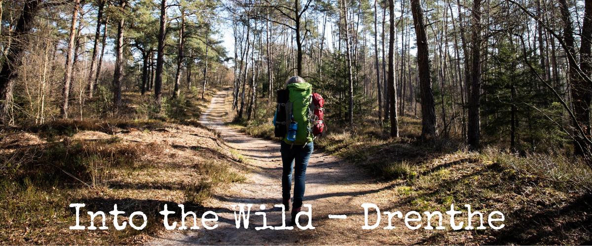 Into the Wild- Drenthe - Katrien de Jong